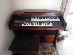 Órgão eletrônico Pinker Atl 800