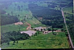 Lene Pegado Vende Excelente fazenda com 180 Hetareas em Sta Izabel na beira da pista leia