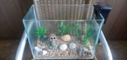 Aquário completo para iniciantes em aquarismo!!!