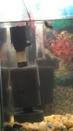 Filtro de espuma para tartaruga ou peixes