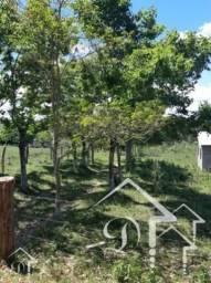 Chácara à venda com 2 dormitórios em Zona rural, Santa maria cod:10066