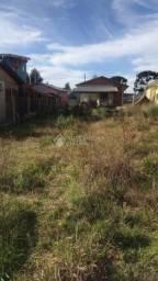 Terreno à venda em Vila dante, Canela cod:325606