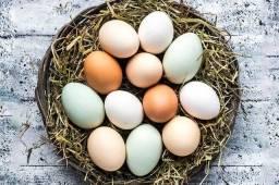 Vendo ovo caipira