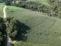 Área Rural a Venda, Campo Largo -PR, Fazendinha, área total 69.044,97 m²