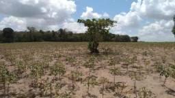 Terreno à venda, 27174 m² por R$ 95.000 - Zona Rural - Arês/Rio Grande do Norte