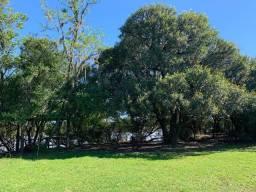 Barbada- 3 hectares de terra de frente pro rio Caí- pego carro e parcelo direto