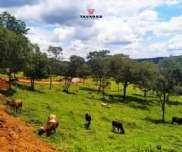 Título do anúncio: Ótimo empreendimento, entre Divinópolis e Nova Serrana, fazendinhas de 20.000 m²