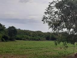 Fazenda 333 ha região plana/ cerrado em Curvelo