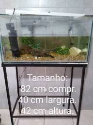 AQUÁRIO 137 LITROS