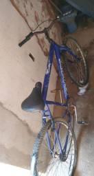 Bike aldulto