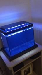 Aquario 15 L