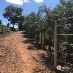 Chácara com 2 dormitórios à venda, 10000 m² por R$ 145.000,00 - Residencial São Vicente -
