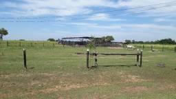 Fazenda na Região do Capão Grande em Várzea Grande 355 hectares