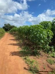 Título do anúncio: promoção 3 hectare