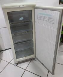 Freezer Electrolux Vertical F170