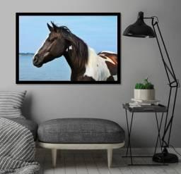 Quadros de cavalos