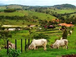 Fazendas em Pernambuco (Agreste, Sertão e Zona da Mata)