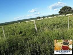 FAZENDA À VENDA EM CAMAPUÃ - MS - DE 864 HECTARES (Pecuária)