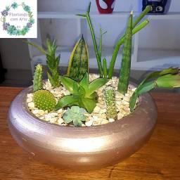 Lindo vaso de cerâmica com 10 suculentas diferentes!