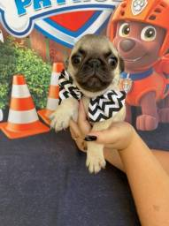 Pug machinho