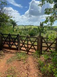 8 hectare em Gloria do Goitá à 3.5 km do centro