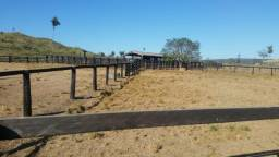 Área total: 247 Alq. (1.195 Há) Município de São Felix do Xingu ? PA