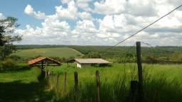 Sítio à venda com 3 dormitórios em Rural, Cajuru cod:V16491