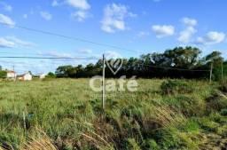Título do anúncio: Terreno à venda em Pinheiro machado, Santa maria cod:1216