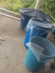 Sistema de criação de peixes em caixa d'água de 1000litros