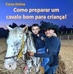 Curso online: Como preparar um cavalo bom para criança?