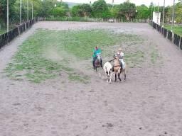 Escola de equitação, escola de vaquejada e centro de treinamento de vaquejada