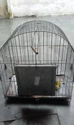 Gaiola p/papagaio ou periquito