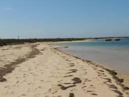 Vendo uma Ilha no Cararai 15.814mts - Cod. AR00005