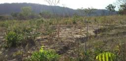 Vendo terreno em São João dos Patos - MA