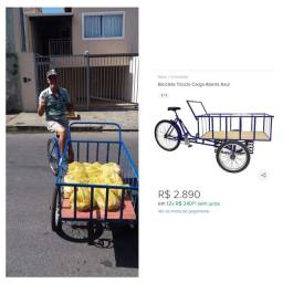 Bicicleta Triciclo Cargueira