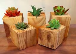 Mini vasos para plantas suculentas leia a descrição