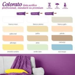 Tinta Standard interior & exterior 18l cores