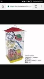 Compro gaiola para hamster