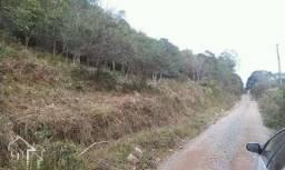 Terreno à venda em Parque serrano ii, Itaara cod:10071