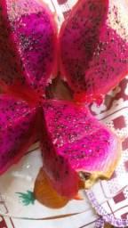 Vendo pitaya, 7 reais a unidade, produto de altissima qualidade *)