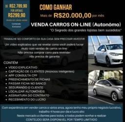 Vendedor de carros online