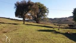 Sítio à venda com 1 dormitórios em Zona rural, Pinheiro machado cod:10182