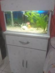 Vendo esse aquário  com móvel