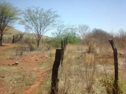 Terreno de chácara 600 metros quadrados.