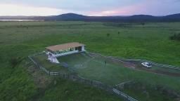 Mato Grosso=Vend. 5.520 P-Hect=(fazenda com 13.600 Hectares=Dupla Aptidão