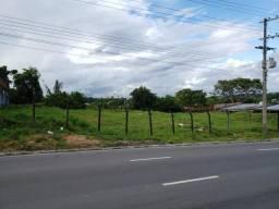 Terreno - 2.500 m2 - Cidade Nova TR42