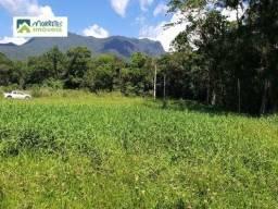 Terreno à venda no bairro Ponte Alta - Morretes/PR