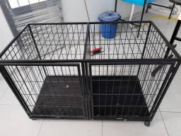 Canil pet shop / veterinária