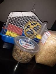 Casinha comida e serragem de hamster