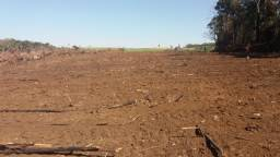 Alugo área para plantação de batata